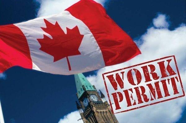 tuyển lao động Canada 2019