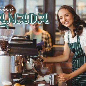 làm thêm ở canada, làm thêm tại canada, du học sinh đi làm thêm ở canada, lương làm thêm ở canada, việc làm thêm ở canada, công việc làm thêm ở canada, tìm việc làm thêm ở canada, việc làm thêm tại canada, quy định làm thêm ở canada
