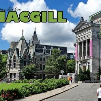 trường đại học mcgill, đại học mcgill, trường đại học mcgill ở canada, trường đại học mcgill canada
