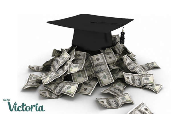 đại học victoria canada, đại học victoria, học phí đại học victoria canada, trường đại học victoria canada, các ngành học của đại học victoria canada