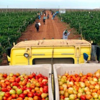 chương trình xuất khẩu lao động đi Úc