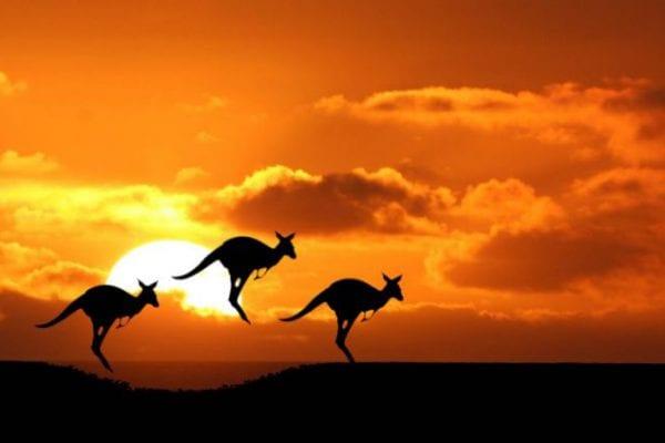 kinh nghiệm lao động Úc