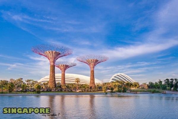 diện tích singapore, diện tích của singapore, diện tích đất nước singapore, diện tích nước singapore, diện tích singapore so với việt nam, singapore diện tích, diện tích của singapore so với việt nam, diện tích singapore bằng tính nào việt nam, dien tich singapore, dien tich singapore bang tinh nao cua viet nam, xinh-ga-po diện tích, tổng diện tích singapore, singapore rộng bao nhiêu, diện tích singapo, singapore bao nhiêu kilômét vuông, đất nước singapore rộng bao nhiêu, diện tích đất singapore, singapore trên bản đồ thế giới, diện tích của đất nước singapore, singapore ở đâu, singapore nằm ở đâu, vị trí địa lý singapore, vị trí địa lý của singapore