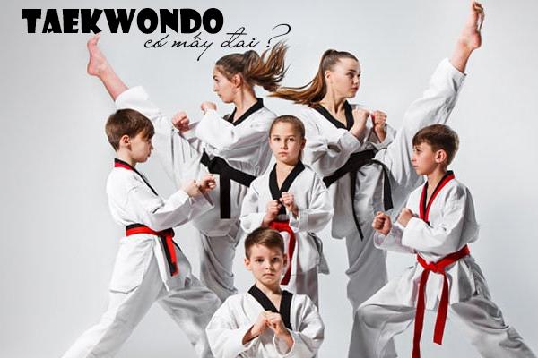 taekwondo, đai taekwondo, các đai của taekwondo, các đai của võ taekwondo, taekwondo có mấy đai, võ taekwondo có mấy đai, teakwondo, môn võ taekwondo, teawondo, teakondo, võ hàn quốc, võ taekwondo, các đai trong võ taekwondo, taewondo, võ taekwondo là gì, các đai taekwondo, tae kwon do, hệ thống đai taekwondo, đai của taekwondo, taekwondo hàn quốc, taekwondo đai gì cao nhất