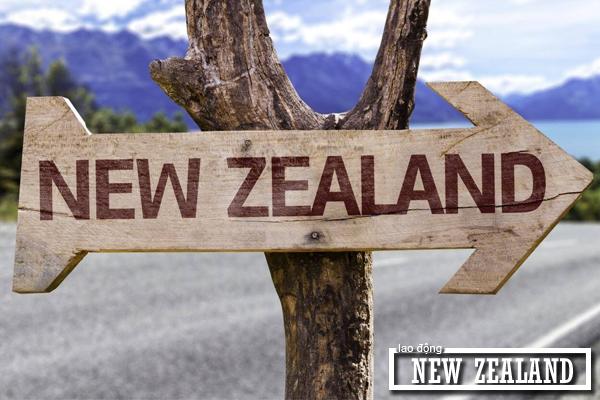 Người lao động cần đảm bảo yêu cầu về độ tuổi khi tham gia làm việc tại New Zealand
