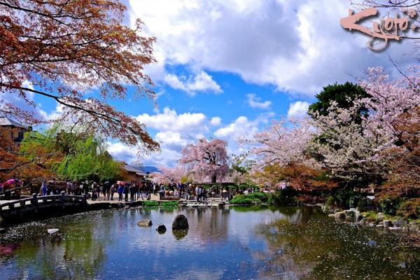 kyoto, thành phố kyoto, kyoto nhật bản, cố đô kyoto, kyōto nhật bản, kyoto city, kyoto nhat ban, kyōto, du lịch kyoto nhật bản, du lịch kyoto, tham quan kyoto