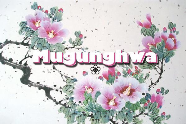quốc hoa của hàn quốc, quốc hoa hàn quốc, quốc hoa của hàn, hoa mugung, mugung, quốc hoa là gì, quốc hoa của hàn quốc là loài hoa nào, hoa của hàn quốc, hoa tượng trưng cho hàn quốc, biểu tượng hoa của hàn quốc, quốc hoa, quoc hoa cua han quoc, hoa hàn quốc, quoc hoa, quốc hoa của nước hàn quốc, loài hoa đặc trưng của hàn quốc, hoa biểu tượng của hàn quốc, mugunghwa, hoa hồng sharon